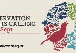 NZ Conservation Week 2018 Banner